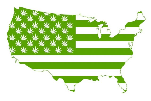 Flag of United States of America with marijuana symbols all over it